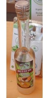 Gran Aloe - Licor Aloe Vera con Miel y Naranja Likör mit Honig und Orange Bio 15% Vol. 200ml Glasflasche hergestellt auf Gran Canaria