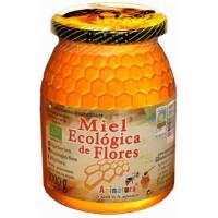 Apinatura - Miel Ecologica de Flores Bio-Blütenhonig 1kg Glas hergestellt auf Teneriffa