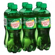 Canada Dry - Ginger Ale 20x 200ml Glasflasche Stiege hergestellt auf Gran Canaria