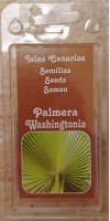 Cactus Canarias - Palmera Washingtonia Semillas Samen Kalifornische Washington-Palme hergestellt auf Gran Canaria