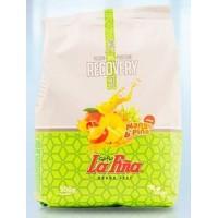 Gofio La Piña - Vegan Protein Revovery Batido Vegan Gofio Mango Pina Sportgetränkepulver 500g Tüte hergestellt auf Gran Canaria