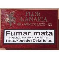 Flor Canaria - Mini Deluxe 50 Zigarillos dunkelbraune Schatulle von Gran Canaria