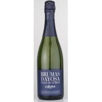 Brumas de Ayosa - Vino Espumoso Afrutado Schaumwein fruchtig 11,5% Vol. 750ml hergestellt auf Teneriffa