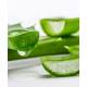 Aloe Vera-Produkte