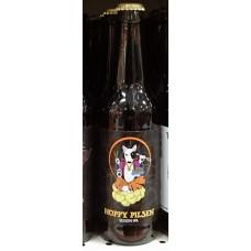 agüita! - Hoppy Pilsen Sesion IPA Cerveza Bier 330ml Glasflasche hergestellt auf Teneriffa