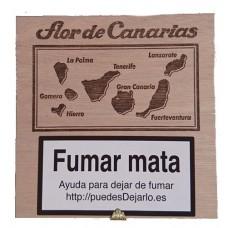 Flor de Canarias - Exquisitos 20 Zigarillos Holzschatulle hergestellt auf Teneriffa - LAGERWARE