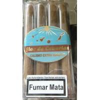 Flor de Canarias - Tubular 4 Zigarren hergestellt auf Teneriffa