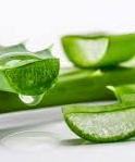 Aloe-Vera-Produkte von den Kanarischen Inseln